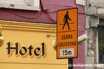 Zebras kreuzen die Straße