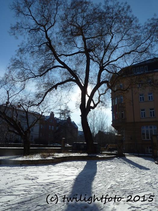 Schulhof Ratsgymnasium