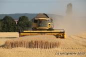 Getreideernte - fast fertig