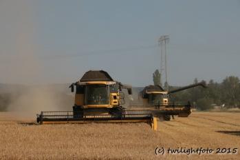 Getreiderente 2015