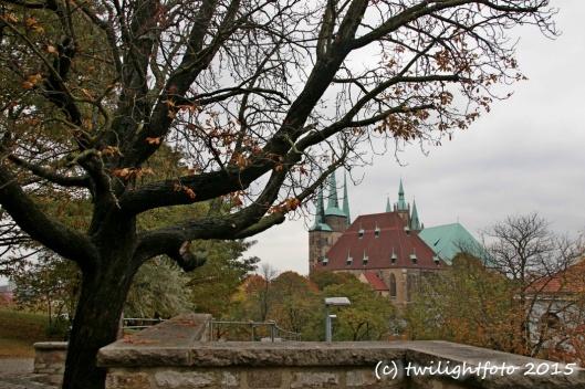 Blick vom Petersberg auf den Domberg