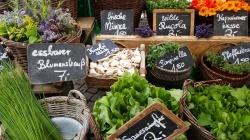 Marktstand mit Kräutern - (c) pixabay.com
