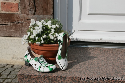 Haus-Schuhe