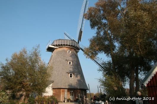 Mühle von Ahrenshoop