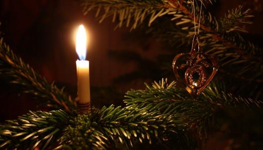 Weihnachtsente - (c) pixabay.com