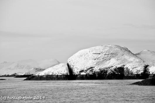 Insel im Hvammsfjörður (Nebenfjord des Breiðarfjörður)