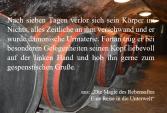 """Textschnipsel aus """"Die Magie des Rebensaftes"""""""