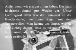 """Textschnipsel aus """"Tapetenwechsel"""""""