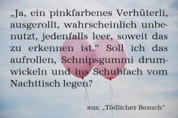 """Textschnipsel aus """"Tödlicher Besuch"""""""